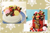 【留学生・社会人対象】 クリスマスオープンキャンパス ~ケーキ作り&デモンストレーション~