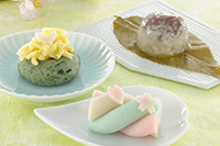 【高校1・2年生対象】 春のスペシャルオープンキャンパス ~和菓子~